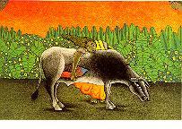 El Toro que se Comio el Sol (1995)