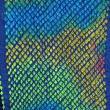 Multi-color Bandhani Silk Scarf