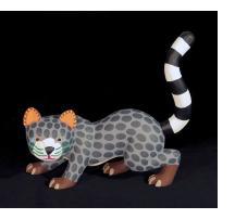 Gato Montes (Mountain Lion)