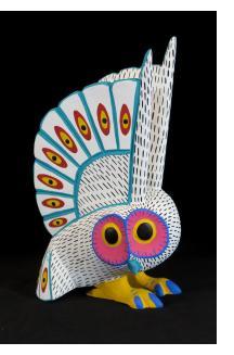 Lechusa (owl)