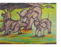 Battle of Rhinos and Elephants