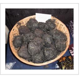Indigo dye balls used by Nigerian indigo artist Gasali Adeyemo. Santa Fe, NM, 2011. (Photograph © Anthony Hart Fisher 2011).