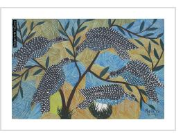 Spotted Birds - Mwila (Congo)