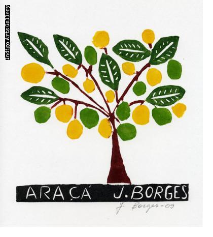 José Francisco Borges - Araca