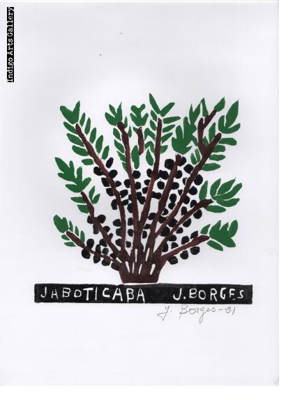 Jaboticaba - José Francisco Borges