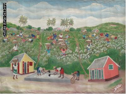 Michaelle Obin Cotton Harvest