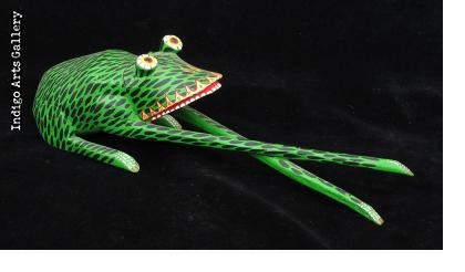 Long-legged Frog from Oaxaca
