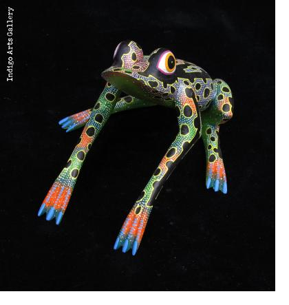 Spotted Frog from Oaxaca