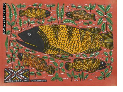 Cucunare (Yellow Fish)