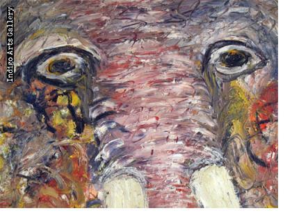Elephant Fossil Sane Wadu