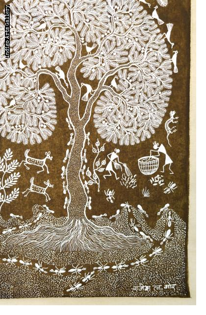 The Work of Ants - Life in a Warli Village